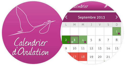 calendrier d'ovulation